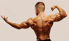 The Big Back Workout.