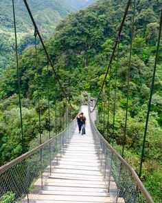 Pailon del Diablo Bridge, Gateway to the Amazon, Banos Ecuador