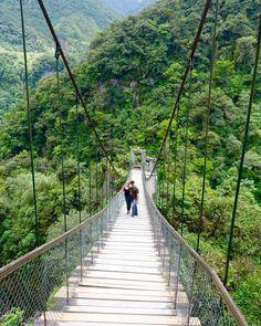 Pailon del Diablo Bridge, Gateway to the Amazon, Banos Ecuador