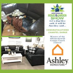 Big huge congrats to Chantel Darke winner of the Ashley Furniture HomeStore Crappy couch contest with Boxer dog 1 couch Get a dog they said, it will be fun they said. Big thanks to media sponsors and 943 the GOAT Garden Show, Home And Garden, Bc Home, Big Huge, Boxer Dogs, Goat, Couch, Sayings, Fun