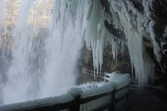 The Top Secret Attraction In North Carolina That Will Make Your Winter Complete