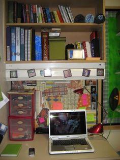 College Dorm Organization/Decoration
