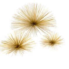 Sea+Urchin+Art in gold metal. UsD 45 for the large size. For my coffee table please!