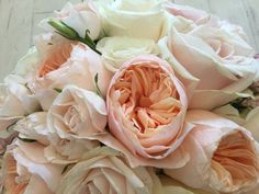 David Austin Juliette, sweet avalanche & avalanche roses, mini spray roses