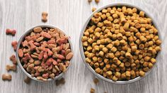 Best Dog Food, Dry Dog Food, Best Dogs, Pet Food, Lose Stomach Fat Diet, Healthy Mummy Smoothie, Royal Canin Dog Food, Dog Food Comparison, Hills Science Diet