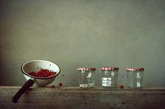 photo: \\\ | photographer: Алена Шибко | WWW.PHOTODOM.COM