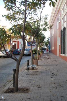 Por la Calle Donato Guerra...