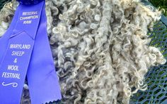Everything You Need to Know About Longwool Fiber