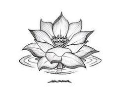 Lotus Flower Tattoo Designs Design