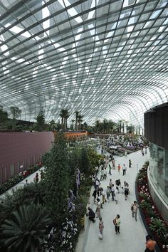 Gardens by the Bay #Singapore #websynergies #GardensByTheBay | The conservatories benefit from an exceptional external solar protection system with its 25,000 m² of Soltis 92 screens by Serge Ferrari. Project report : http://en.sergeferrari.com/solar-protection/soltis-92-screens-protecting-plants-at-the-gardens-by-the-bay-2/