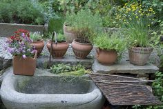 Furighedda gardening: giardino medievale
