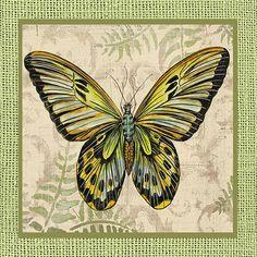 I uploaded new artwork to fineartamerica.com! - ' Butterfly Vignettes-b' - http://fineartamerica.com/featured/-butterfly-vignettes-b-jean-plout.html via @fineartamerica
