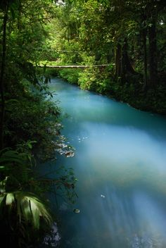 One of Costa Rica's natural wonders:  Río Celeste.  The blue color of the water is due a unique combination of minerals from the nearby Tenorio volcano.