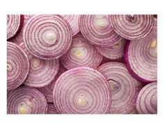 Fresh Red Onions Lámina fotográfica por Steve Gadomski en AllPosters.es