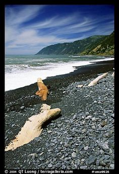 Black Sand Beach - Just north of the town of Shelter Cove in Humboldt County, CA. Fun Places For Kids, Places To See, Beach Walk, Sand Beach, California Dreamin', Northern California, Humboldt County, Black Sand, Places Of Interest