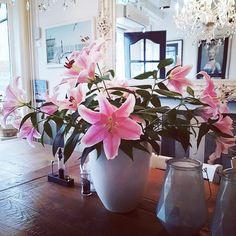 Lelies Restaurant, Vase, Table Decorations, Furniture, Home Decor, Brewery, Decoration Home, Room Decor, Diner Restaurant