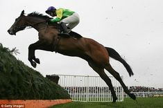 Ruby Walsh on board Kauto Star at Aintree in 2008
