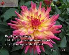 """""""Be of good courage, and he shall strengthen your heart, all ye that hope in the Lord.: Psalm 31:24"""