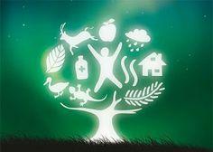 respeto por la ecología y el desarrollo sustentable