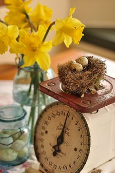 love this display...I have a scale just like this one...all I need are the daffodils!