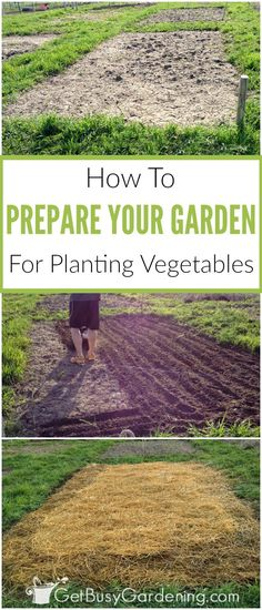 Preparing garden beds for planting vegetables involves weeding, amending and cultivating to create the best soil for garden beds.