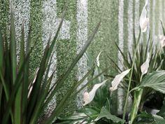 Andrii Bondarenko on Behance Tourist Agency, Agency Office, Interior Design Photography, Office Interiors, Behance, Plants, Plant, Planets