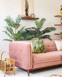 Color combo- millennial pink and green