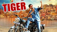 Watch the Upcoming Telugu Movie Tiger Trailer here: http://www.latestrailerz.com/tiger-2015/