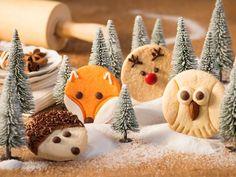 Rezept Eulen-Plätzchen Owl Cookies, Galletas Cookies, Cute Cookies, Christmas Desserts, Christmas Baking, Christmas Cookies, Christmas Ornaments, Christmas Recipes, Xmas