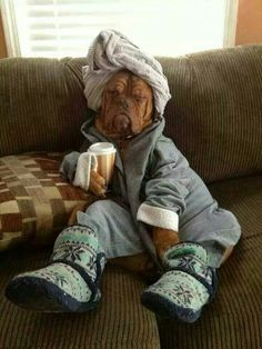 Looks like my daughter in the morning!!!! hahahahaha