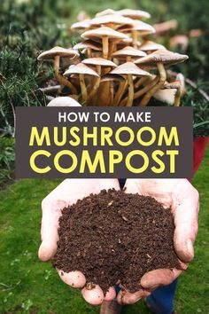 Learn how to make your own organic mushroom compost at home to help enhance your garden! Or make mock mushroom compost. Either way, learn how to use it and the benefits of adding it to your garden. Compost Soil, Garden Compost, Garden Pests, Compost Bucket, Easy Garden, Edible Garden, Garden Ideas, Gardening For Beginners, Gardening Tips