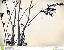 bildergebnis f r bambus zeichnen tusche pinterest. Black Bedroom Furniture Sets. Home Design Ideas
