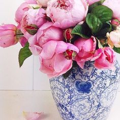 I still love this old pic of my David Austin roses they are so full of roses at the beginning of the season