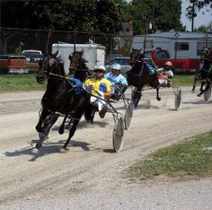 harness racing | Harness Racing