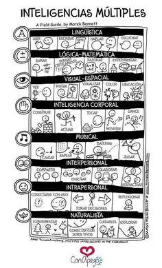 Intel·ligencies múltiples
