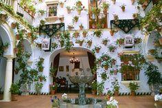 Decoracion de espana | ... cordobeses con sus decoraciones de tiestos en las paredes blancas