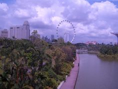 Why The Lion City - Top Tourist