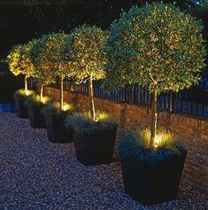 100 Gartengestaltung Bilder und inspiriеrende Ideen für Ihren Garten - gartengestaltung in bilder beleuchtete pflanzen