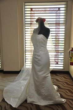 My David's Bridal Gown