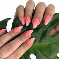 Manicure ombre 5 trendy spring ideas that are worth repeating . - Manicure ombre 5 trendy spring ideas that are worth repeating – nails nails nails – - Ombre Nail Designs, Nail Art Designs, Ombre Nail Art, Pink Ombre Nails, Peach Nails, Pedicure Designs, Nagel Gel, Nail Decorations, Halloween Decorations