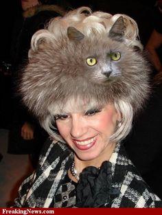 Woman in Cat Hat..say WHAAAAT ??