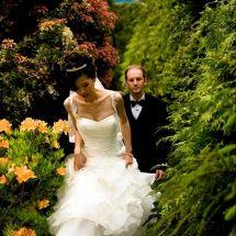 Edmonton Destination Wedding Photographer | Vancouver BC - fmphotostudios | Edmonton Wedding Photographer Destination Wedding Photographer, Vancouver, One Shoulder Wedding Dress, Wedding Dresses, Fashion, Bridal Dresses, Moda, Bridal Gowns, Wedding Dressses
