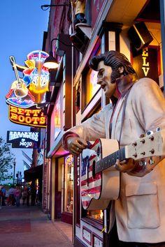 Elvis Statue - Nashville,Tennessee by Brian Jannsen