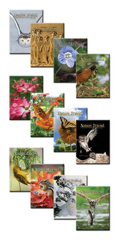 Homeschooler's discount on subscription to Nature Friend magazine
