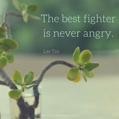 The-best-fighter-is-never-angry..jpg 640×640 pikseliä