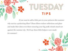 Happy Tuesday Tips!!  http://www.everythingbloom.com/tuesday-tips-162-%C2%B7-summer-lovin