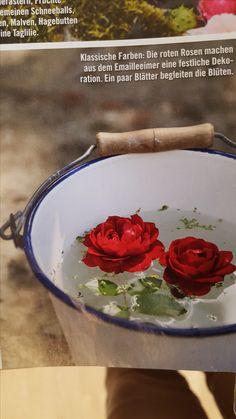 Finde Diesen Pin Und Vieles Mehr Auf Gardening Von Amy Moore.