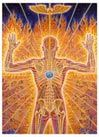 The soul-searching pilgrim arrives on the mountain top, and his kundalini energy, the serpent power, begins to ascend within him. The caduceus or healing staff is internalized. The eye of God in the form of an angelic presence channels heart-opening flames of divine grace into his center, sending his body/mind into a state of God Continue Reading »