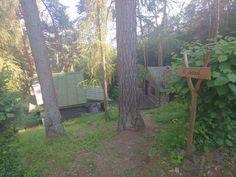 Tak to jsou nase dva sruby v Kalisti,nedaleko reky Sazavy Trunks, Plants, Drift Wood, Tree Trunks, Plant, Planets