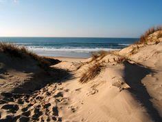 Lacanau Ocean in SW france